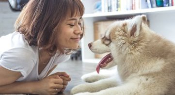 How the Bond between Humans & Pets Helps Their Graduation From 2nd to 3rd Density Vibration