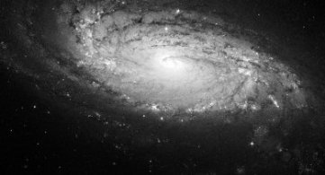 Our Milky Way Galaxy: Its Application of The Law Of One, Its Densities and Planets Therein